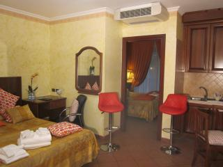 two bed-rooms  appartment next to FCO Fiumicino  a