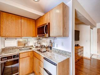 Tyra Aspen Studio Condo Kitchenette Breckenridge Lodging
