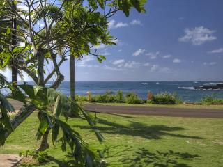 Hale Haloko Kaiin Poipu - Oceanviews and just steps to the beach, Koloa