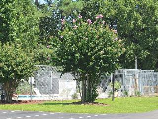 Glens Bay Retreat Quiet Secluded Beachgoer Paradise- ********D