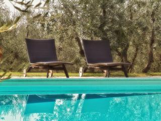 9 bedroom Villa in Castelnuovo Berardenga, Chianti, Tuscany, Italy : ref 2293885
