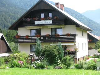 Apartments Milena - Two Bedroom apartment+balcony, Kranjska Gora