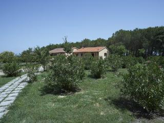 Collina T2, Montaione