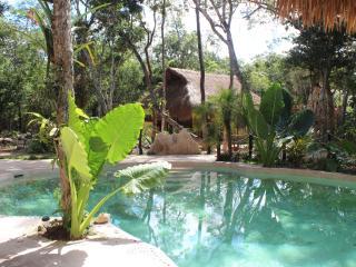 Brand new Delux Cabana Jaguar!, Macario Gomez