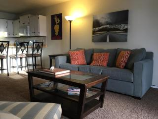 Mountain getaway 2/2 sleeps 6 Free WiFi-7ski areas, Dillon