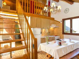 Apartment Chamomile, Chamonix