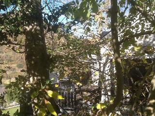 La maison dans les arbres, Ancizan