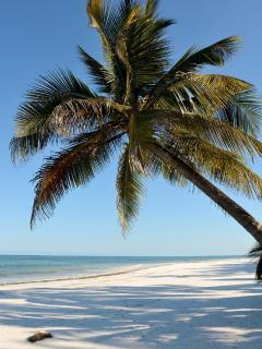Matemwe Beach - view from Hodi Hodi