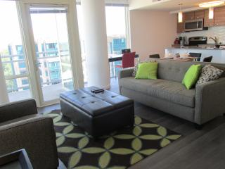 Lux Spring Hill 2BR w/Pool, WiFi, McLean