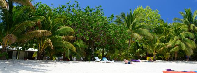 Enjoy our white sandy beach