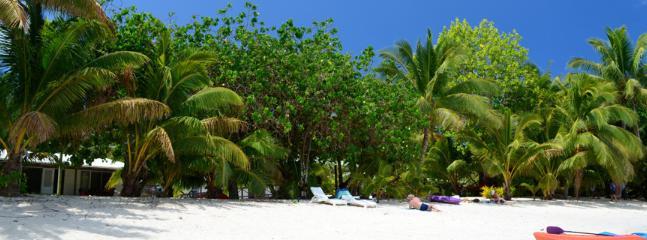 Enjoy our white sandy beach