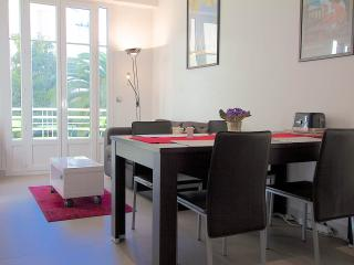 Adorable, bright 1 bedroom apartment rental in Nice, Nizza
