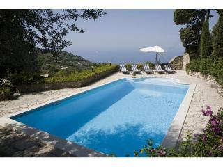 CAPRI-LUSSUOSA VILLA CON PRIVATE SWIMMING POOL-WIFI, Capri