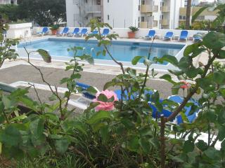 Amazing Apartment with Pool and Sea View, Funchal