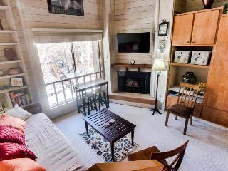 Rustic-chic studio w/loft bed, near Dollar Mountain! Includes shared pool, sauna, Sun Valley