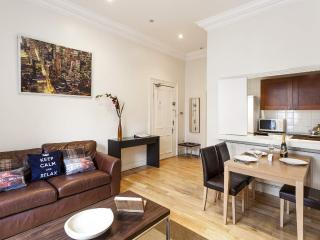 HYDE PARK -DELIGHTFUL- no stairs, FastWiFi, subway 1min