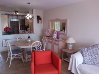 PANORAMIK & COZY TWO BED ROOMS FLAT - WITH WIFI, Costa Adeje