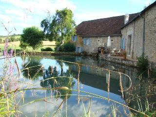 Moulin de Vaudres | rivière Soue