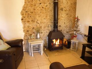 Smuggler's Cottage logburner pool West Dorset, Whitchurch Canonicorum