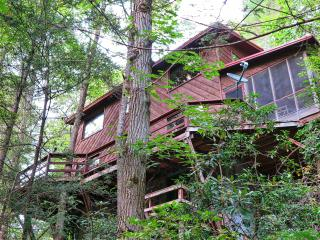 Pigeon River Hideaway-on the LITTLE PIGEON RIVER s, Sevierville