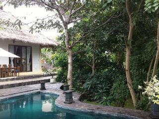 Palm Villa Balangan, Pecatu