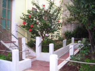 Campo Romano x2, Iglesias