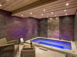 Wellness Suite with jacuzzi, sauna & shower