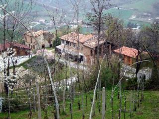 Casa dell'Abbondanza Chalet, Vernasca
