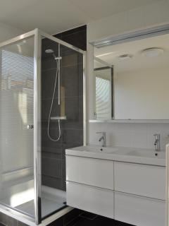 Same bathroom: shower and 2 washbasins
