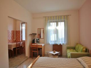 TH00409 Apartments Nerina / Studio A1, Novigrad