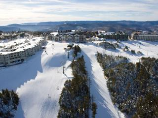 Free parking, Wifi and Hot Tub*, Sleeps 8 :ML#265;2BR/2Bath*Ski in/Out