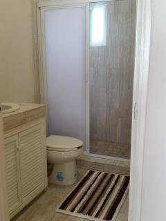 main bathroom, very large shower