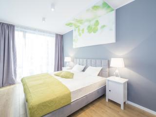 Superior One Bedroom Apartment Ireland, Breslavia