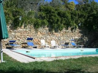 apartment in villa  with pool in the chianti V