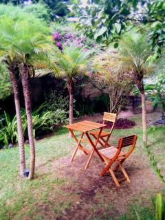Garden Table under tropical palms