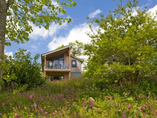 3 Bed Woodland Home - Gold, Pentewan