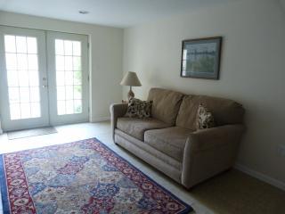 sleep sofa in main room