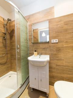 Shower, sink, bathroom, wc, toilet, hairdryer