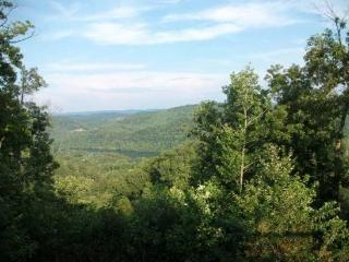 The View, New Tazewell