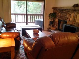 Four-bedroom condo in Tahoe, near beach and ski!, Incline Village