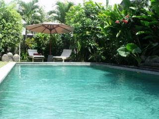garden and swimming pool - villa in bali canggu area - near the beach