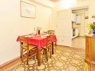 Palazzo della Stufa - apartments for rent in Lucca - historical center - wifi