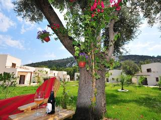 440-Lux Holiday Villa for 6, Torba
