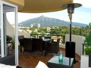 Trendy apt 10 min walk to port, Puerto Banus