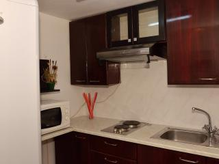 Fully equipped kitchen featuring a refrigerator, microwave, electric cooking plate
