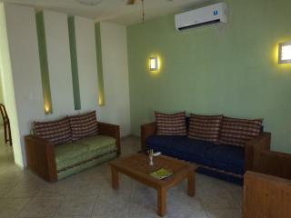 Living Room Pic 1