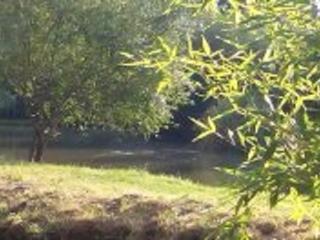 Vue sur l'étang, de la maison, l'endroit où nous avons installé notre terrasse