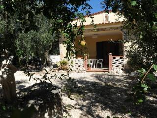 Villa singola immersa in uno splendido uliveto, Mattinata