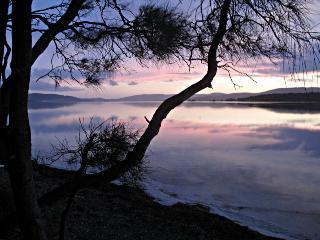 Lakes Edge, Forster