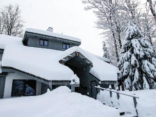 Cozy ski chalet w/ shared pool, sauna, & tennis. Dogs welcome!, Killington